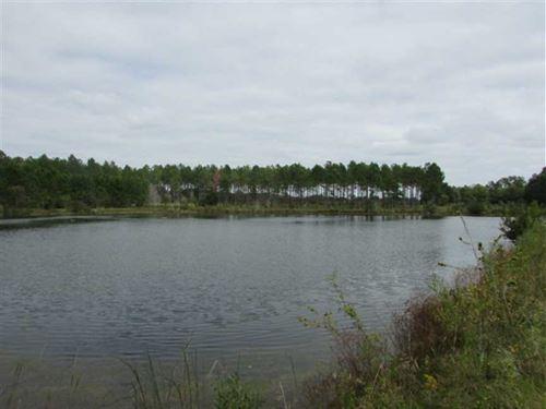 Okapilco Creek Plantation : Moultrie : Colquitt County : Georgia