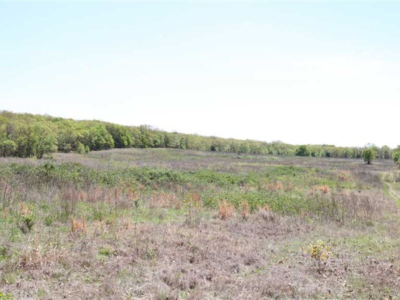 310 Acres With Improved Pastures : Vian : Sequoyah County : Oklahoma