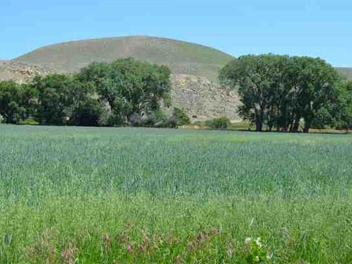 Clarks Fork River Land For Sale in : Cody : Park County : Wyoming