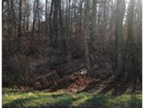 Lot Gives You Access to Seven Spri : Elizabeth : Harrison County : Indiana