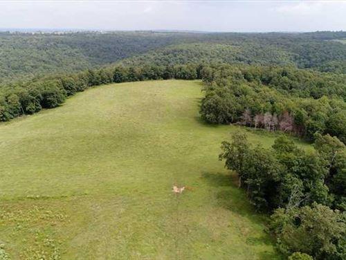 Buckhorn Camp 120 : Prairie Grove : Washington County : Arkansas