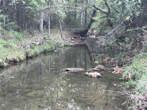 119 Acres In Mt Grove Missouri : Mountain Grove : Wright County : Missouri