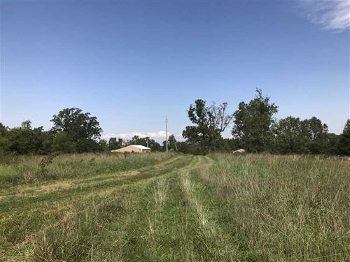52 Acre Recreational Property - Da : Long Lane : Dallas County : Missouri