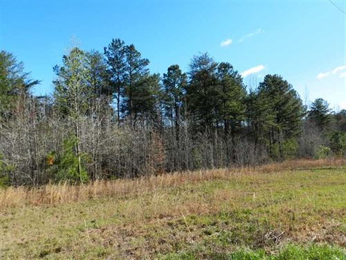 Great Hunting Tract in Winston Cou : Double Springs : Winston County : Alabama