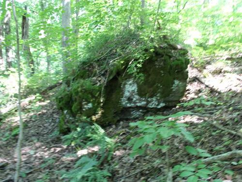 Mt Union Rd - 28 Acres - Meigs Cou : Rutland : Meigs County : Ohio