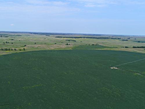 Kearney County Pivot And Range : Minden : Kearney County : Nebraska