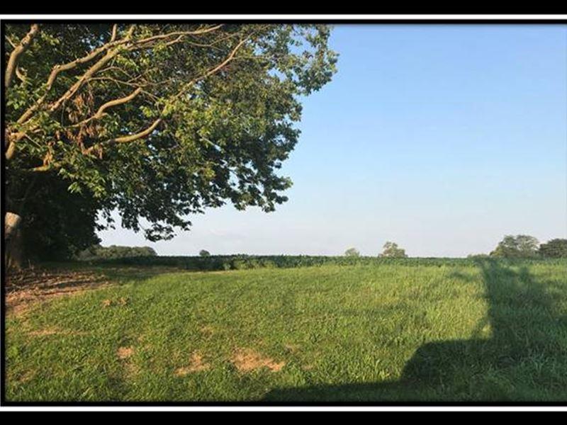 Tract 1 Weber Walker Farm : Hilliard : Franklin County : Ohio