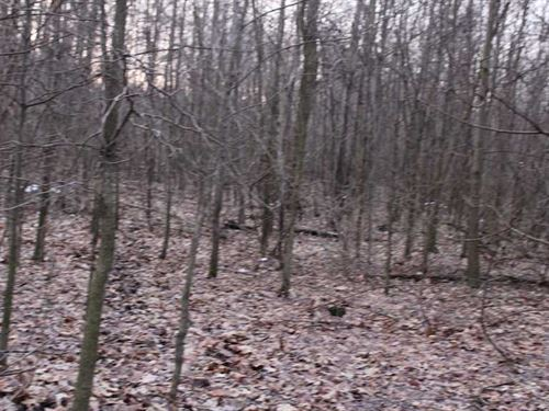 Mahoning Ave - 21 Acres - Mahoning : Diamond : Mahoning County : Ohio