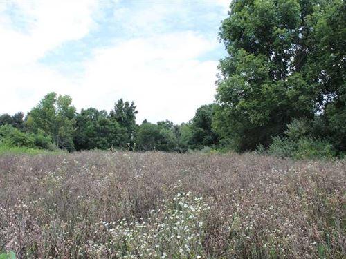 Jockey Hollow - 10 Acres - Harriso : Flushing : Harrison County : Ohio
