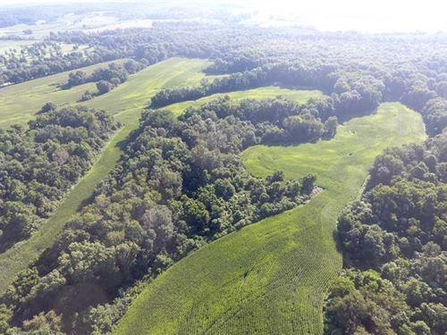 Franklin Valley - 125 Acres - Jack : Jackson : Ohio