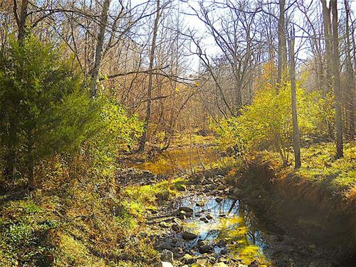 Nevada Dr - 6.7 Acres - Adams Coun : Winchester : Adams County : Ohio