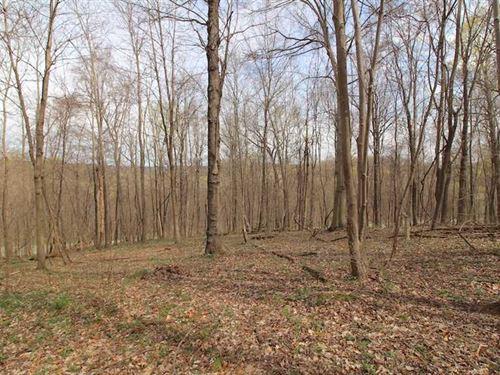 TR 56 - 7 Acres - Perry County : Perry : Ohio