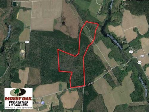 104 Acres of Hunting And Timber La : Surry : Virginia