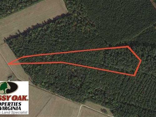Under Contract, 8.38 Acres Timber : Suffolk : Virginia