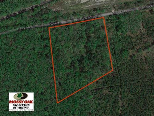 7.7 Acres of Hunting And Investmen : Chesapeake : Virginia