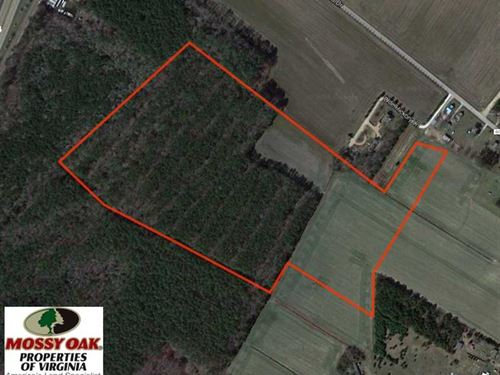 44 Acres of Hunting And Timber Lan : Exmore : Northampton County : Virginia