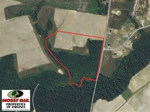 20 Acres of Hunting And Farm Land : Sedley : Southampton County : Virginia