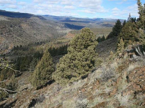 Recreational Property Near Starvat : Fossil : Wheeler County : Oregon