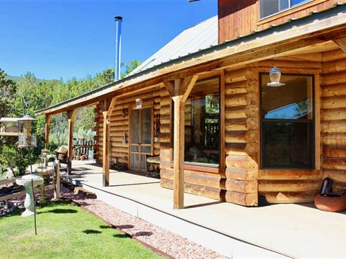 Grand Junction Area Log Home on 40 : Molina : Mesa County : Colorado