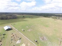 Vacant SW CR 14 Greenville, FL 32 : Greenville : Madison County : Florida