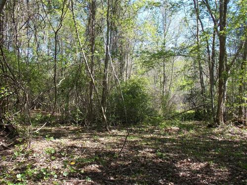 35.79 Acres on SW Moseley Hall Road : Madison : Florida