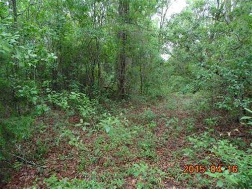238 Gapac Trail : Madison : Florida