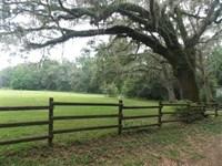 1014 NE Garden Road : Cherry Lake : Madison County : Florida