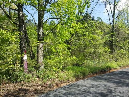 80 Acres of Recreational, Timb : Clinton : Van Buren County : Arkansas