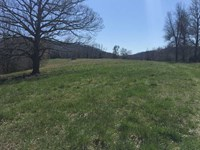 117 Acres of Recreational Hunt : Marshall : Searcy County : Arkansas