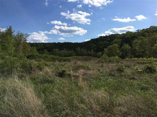 Phelps County Retreat : Edgar Springs : Phelps County : Missouri