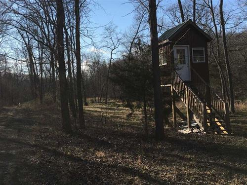 124 Acres Mixed Pasture Woods Prim : Rolla : Maries County : Missouri