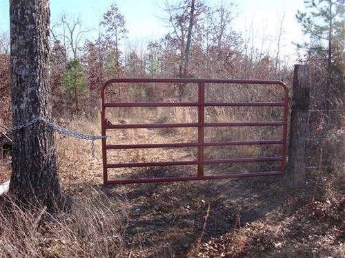 41.6 Acre Hunting Tract Near Falli : Winona : Oregon County : Missouri