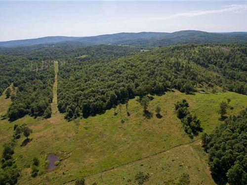 63.7 Acres With Well, Power, And : Winona : Shannon County : Missouri