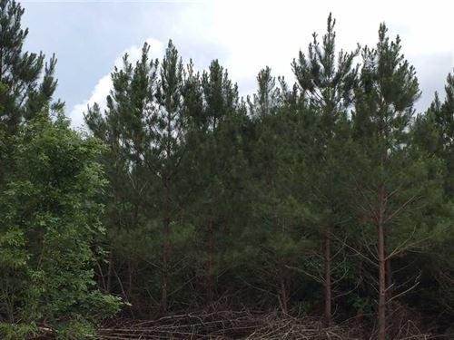 Cheniere Tract, Jackson Parish, 42 : Choudrant : Jackson Parish : Louisiana
