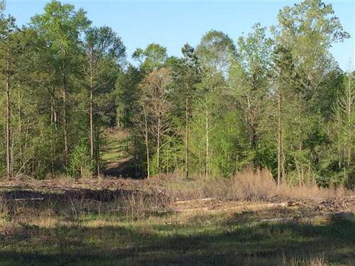 Volunteer Tract, Jackson Parish, 1 : Choudrant : Jackson Parish : Louisiana