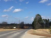 Sharp Road Tract, Jackson Parish : Eros : Jackson Parish : Louisiana