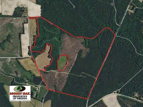 132.6 Acres of Residential Hunting : Disputanta : Sussex County : Virginia