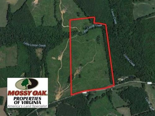 66 Acres of Hunting And Investment : Brookneal : Charlotte County : Virginia