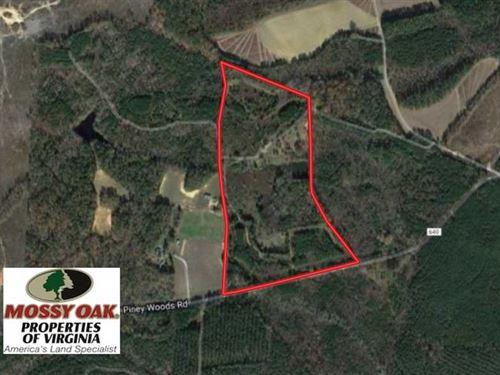 Under Contract, 37 Acres of Hunti : Dolphin : Brunswick County : Virginia