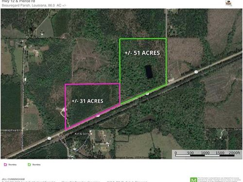 Hwy 12 And Clark Road, Beauregard : Ragley : Beauregard Parish : Louisiana