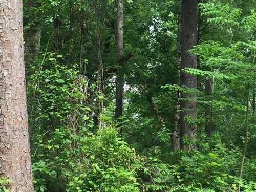 Copper Road Tract, Beauregard Pari : Dequincy : Beauregard Parish : Louisiana