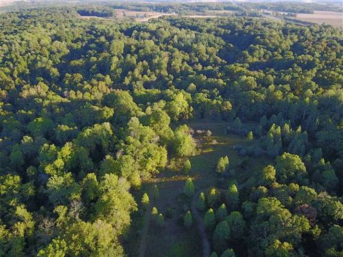 Ponton Farm 84 Acres, 3755 East Co : Hillsdale : Vermillion County : Indiana