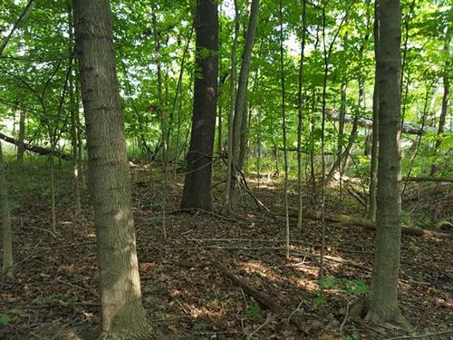 Land For Sale-Watson Place Lot 8 : West Terre Haute : Vigo County : Indiana