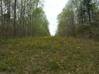 2000 South Owensburg Road, Greene : Springville : Greene County : Indiana