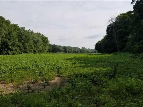 Vermillion River 30 : Cayuga : Vermillion County : Indiana