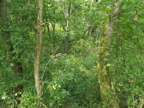 20 Acres. Small Tract With Good hu : Vevay : Switzerland County : Indiana