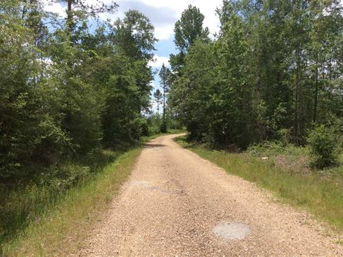 Colgrade Tract, Winn Parish, 68 Ac : Natchitoches : Winn Parish : Louisiana