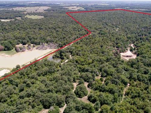 161 Acres of Heavily Wooded Huntin : Franklin : Robertson County : Texas