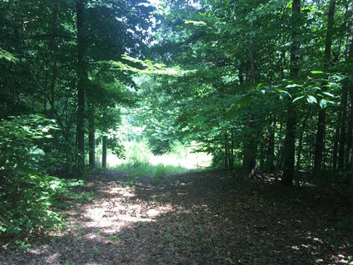 4+ Ac Secluded in Travelers Rest : Travelers Rest : Greenville County : South Carolina