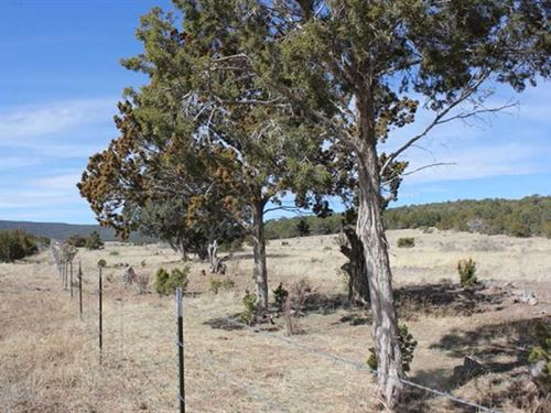 74.94 Acres For Development : Tijeras : Bernalillo County : New Mexico